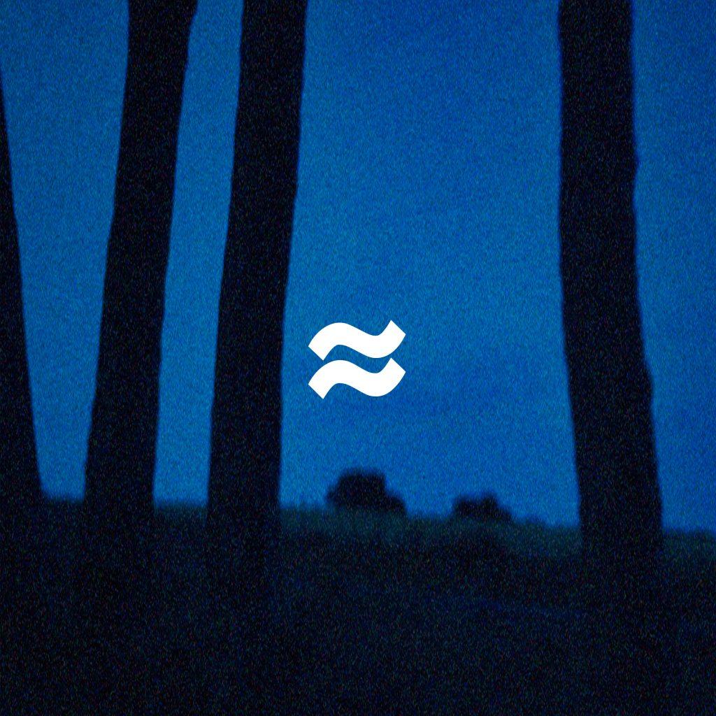 Vagues nouvel album aux portes de la nuit